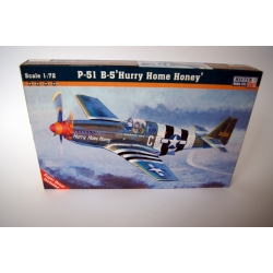 "P-51 B5 ""Hurry Home Honey"""